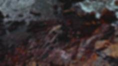 DOS_Promo Image 6.jpg