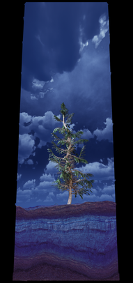COSMIC TREE MASTER SEQUENCE_02493.png
