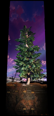 COSMIC TREE MASTER SEQUENCE_03845.png