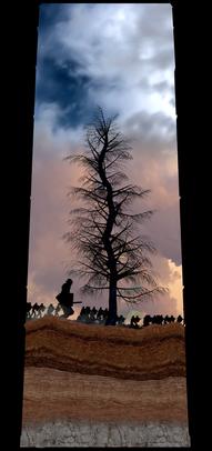 COSMIC TREE MASTER SEQUENCE_03313.png