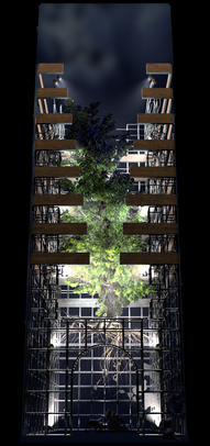 COSMIC TREE MASTER SEQUENCE_04780.png