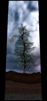COSMIC TREE MASTER SEQUENCE_03288.png