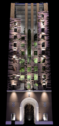 COSMIC TREE MASTER SEQUENCE_06055.png