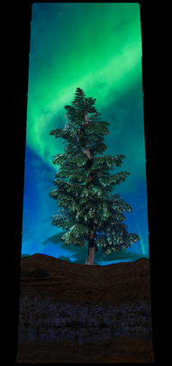 COSMIC TREE MASTER SEQUENCE_03229.png