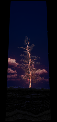 COSMIC TREE MASTER SEQUENCE_02896.png