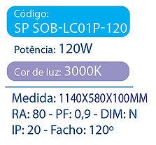 LC01P-120.jpg