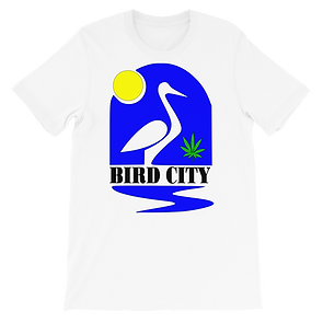 BIRD-CITY-LOGO-(1)_Untitled-design-(3)_m