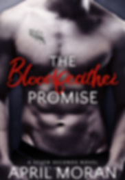 Bloodfeatherpromise ebook.jpg