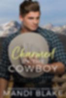 Charmed - book 2 ebook.jpg