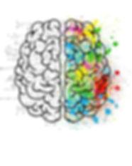 neuroEI.jpg