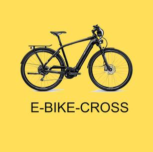 Box Ebike Cross.jpg