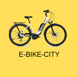 Box Ebike City