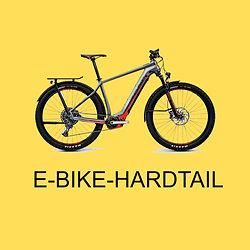 Box Ebikes Hardtail.jpg