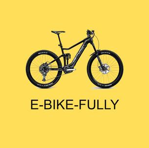 Box Ebike Fully.jpg