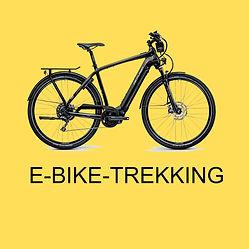 Box Ebike Trekking.jpg