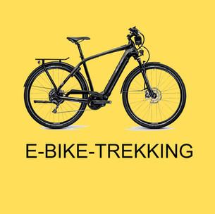 Box Ebike Trekking