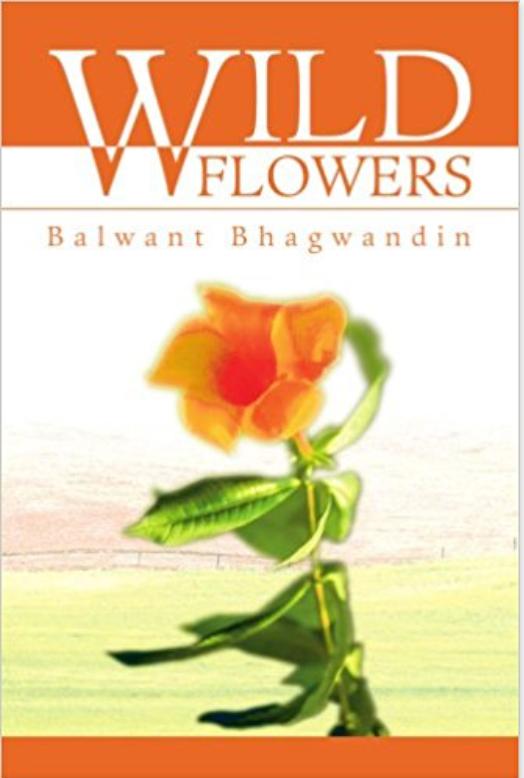 Wild Flowers by Balwant Bhagwandin