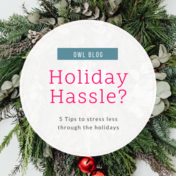 Holidays causing you hassle? 5 Tips to help you stress less through the holidays