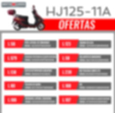 HJ125T-11A-01.jpg