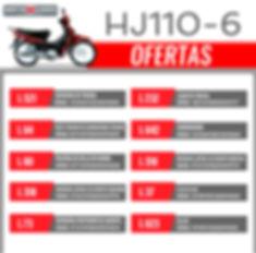 HJ110-6-01.jpg