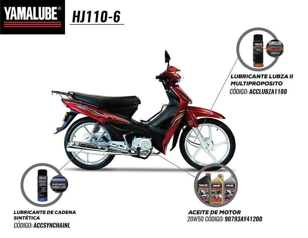 HJ110-6.jpg