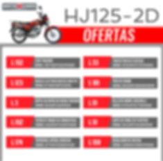 HJ125-2D-01.jpg