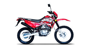 ZX 200-01-min.jpg