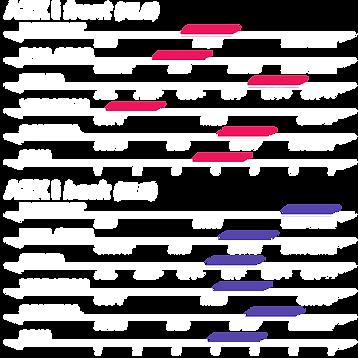 azxi_1.png