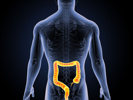 La coloscopie: l'intestin, votre meilleur ami