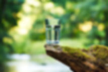 Verre d'eau posé sur une souche d'arbre dans la nature