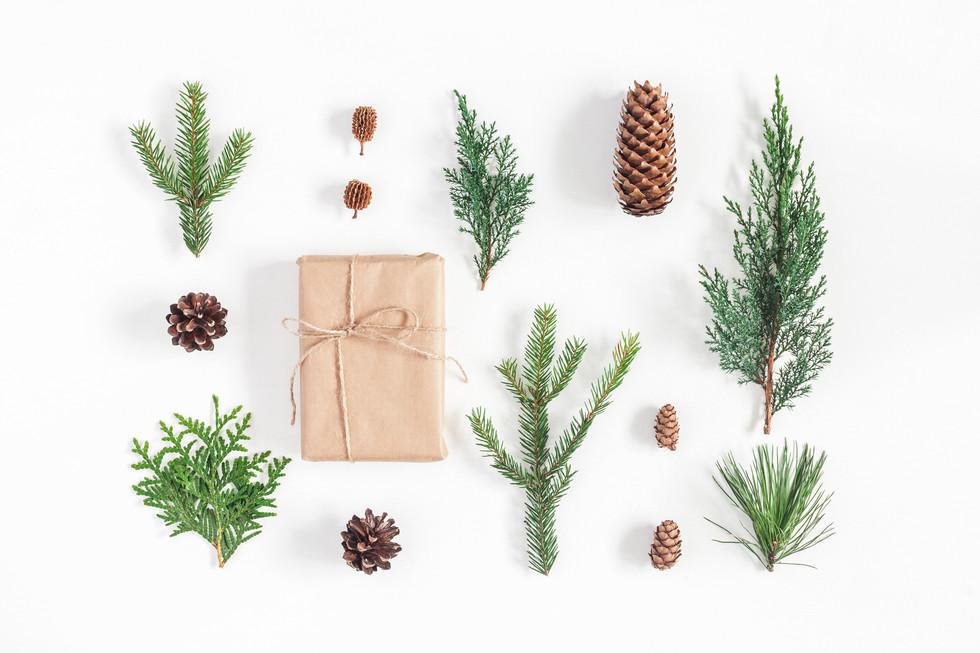 5 favoritter til årets juleønskeliste!