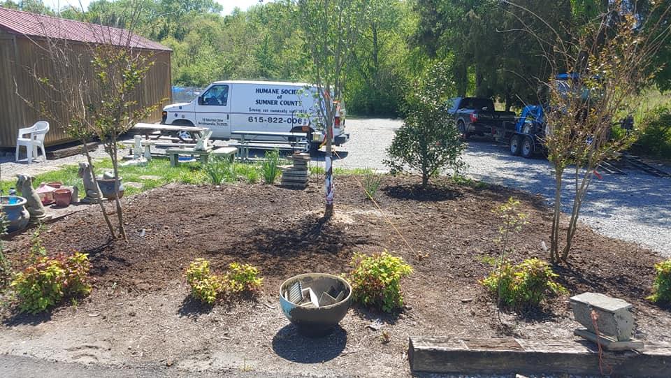 Tree and Shrub Planting