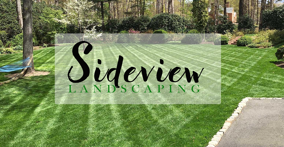 Sideview Landscaping Diamond cut with lo