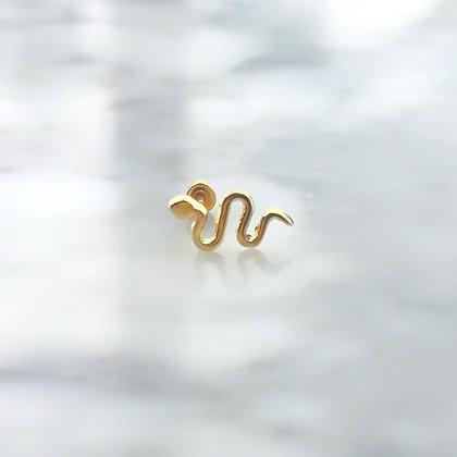 Snake Piercing 10k