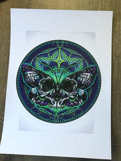 Limited Edition •Skullfly• Print