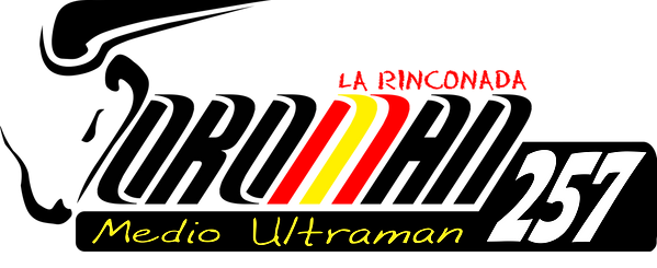 logo toroman 257_definitivo.png