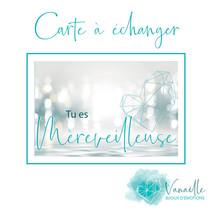 CARTE_MEREVEILLEUSE_RECTO.jpg
