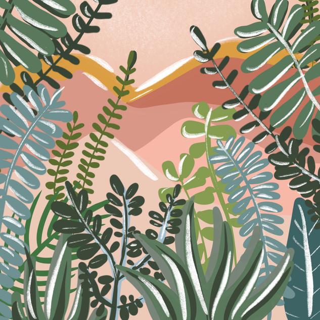 Desert Foliage - illustration