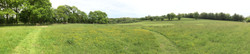 pano of field