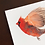 Thumbnail: Framed Bird Print (Northern Cardinal)