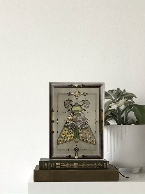 Framed Moth Print