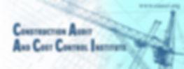 CAACCI Logo small 80 (3).jpg
