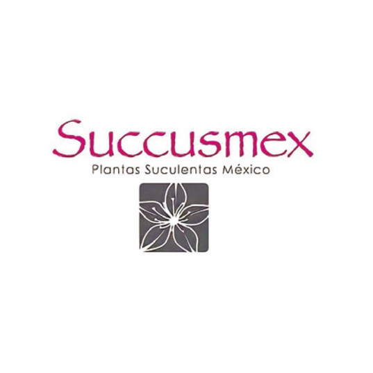succusmex.jpg