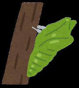bug_sanagi.png
