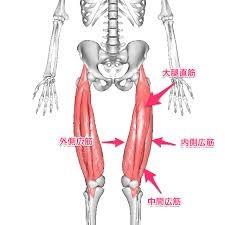美脚になり腰痛にも効くストレッチ