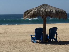 Beach Reading: Bennicas & Associates June 2021 Letter