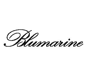 Bluemarine@2x.png
