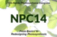 NPC14_2.PNG