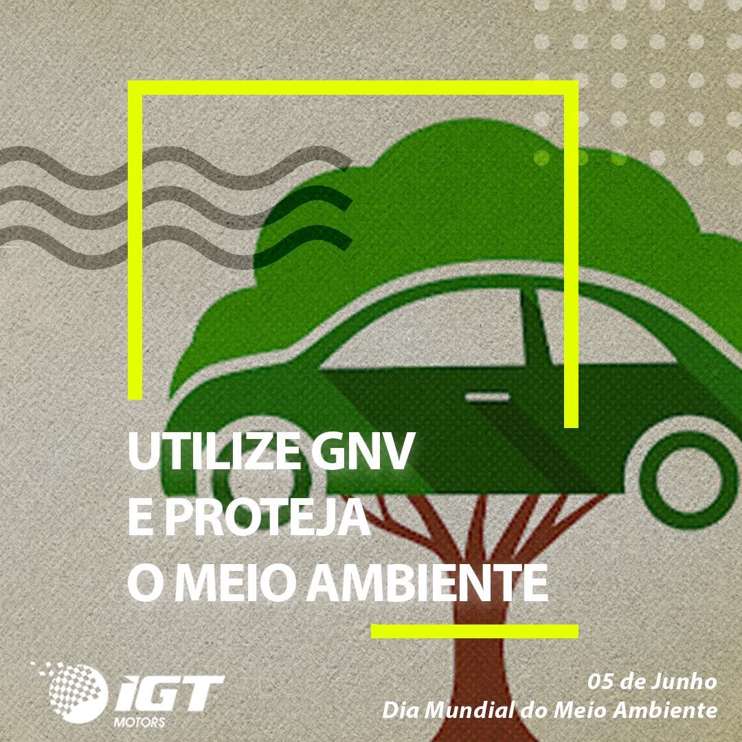 Dia do Meio Ambiente IGT Motors