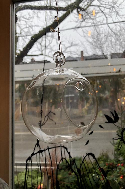 Small Hanging Terrarium